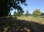 Jardin 5